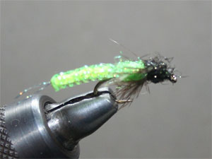 Core Caddis